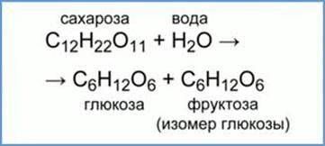 https://static-interneturok.cdnvideo.ru/content/konspekt_image/69827/a3321490_1991_0131_0fd4_22000aa81b95.jpg