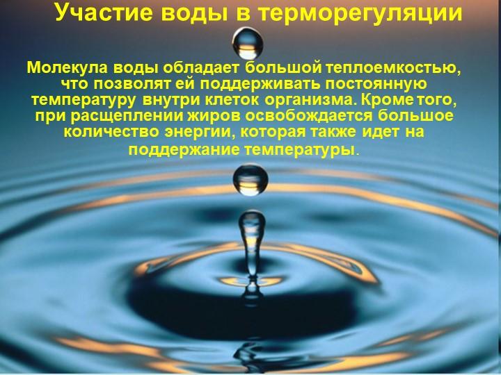 Участие воды в терморегуляцииМолекула воды обладает большой теплоемкостью, чт...