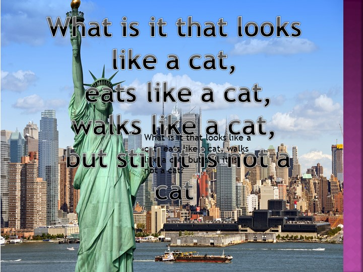 What is it that looks like a cat, eats like a cat, walks like a cat, but stil...