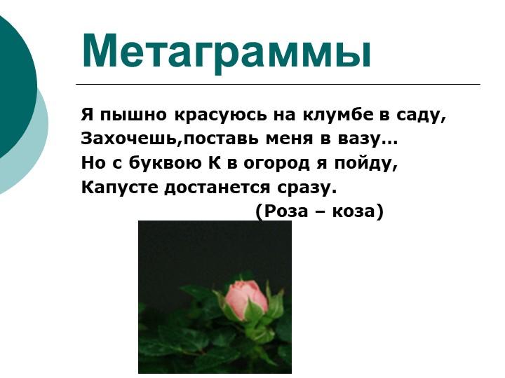 МетаграммыЯ пышно красуюсь на клумбе в саду,Захочешь,поставь меня в вазу…Но...