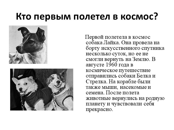 Кто первым полетел в космос?         Первой полетела в космос собака Лайка....