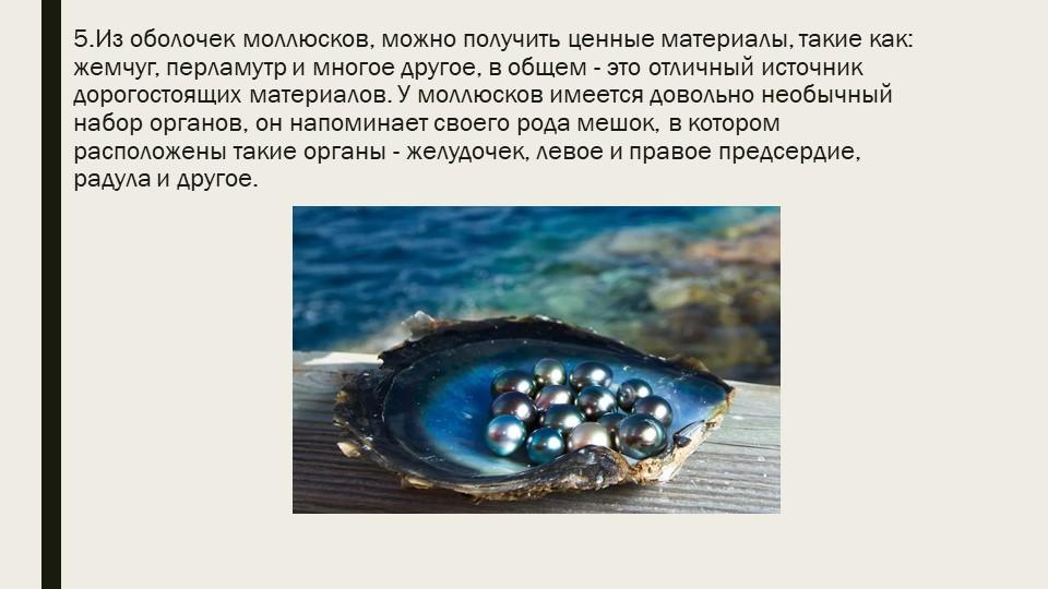 5.Из оболочек моллюсков, можно получить ценные материалы, такие как: жемчуг,...