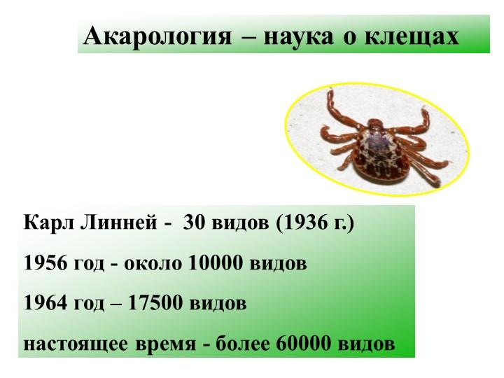 Акарология – наука о клещахКарл Линней -  30 видов (1936 г.)1956 год - около...