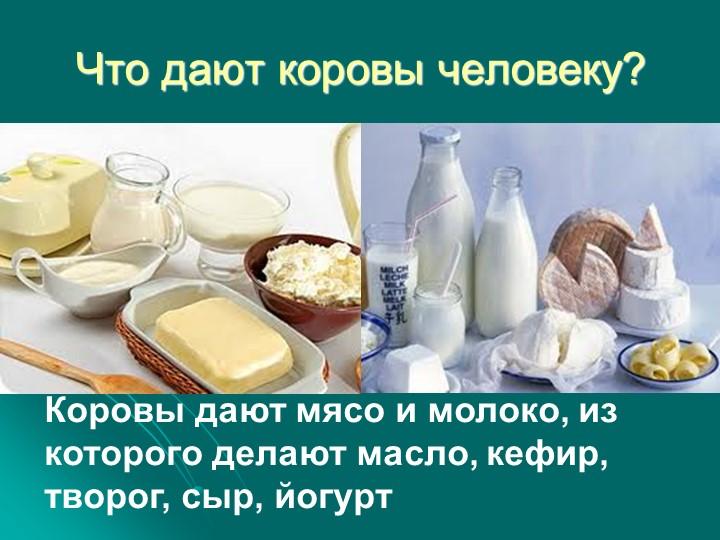 Что дают коровы человеку?Коровы дают мясо и молоко, из которого делают масло,...