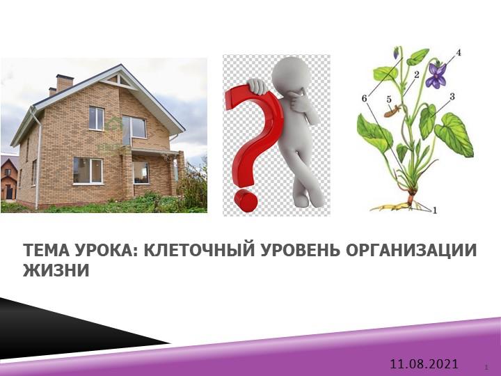 Тема урока: КЛЕТОЧНЫЙ УРОВЕНЬ ОРГАНИЗАЦИИ ЖИЗНИ08.04.20211