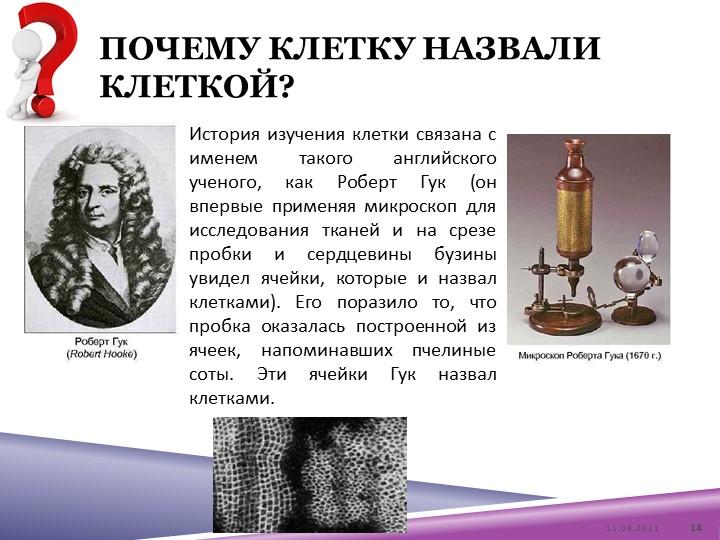 Почему клетку назвали клеткой?История изучения клетки связана с именем такого...