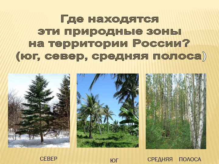 Где находятся эти природные зоны на территории России? (юг, север, средняя...