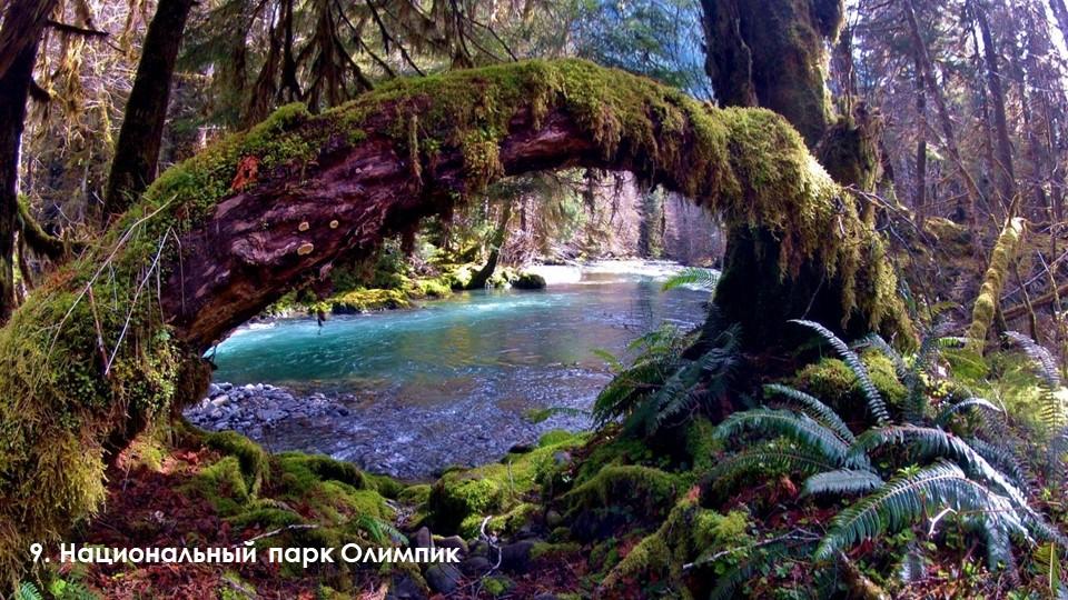 9. Национальный парк Олимпик