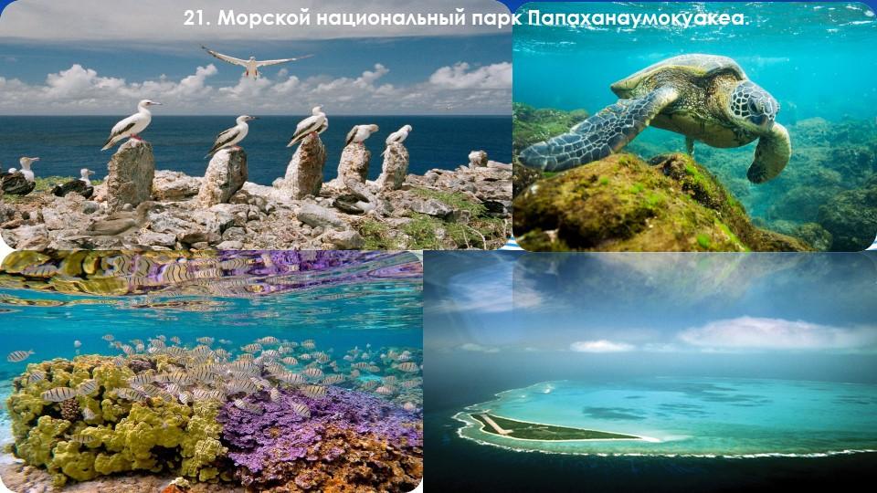 21. Морской национальный парк Папаханаумокуакеа.