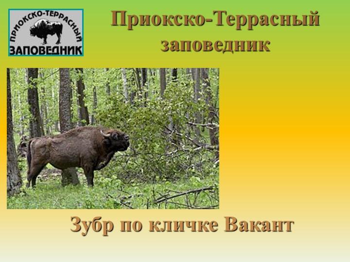 Приокско-Террасный заповедник Зубр по кличке Вакант