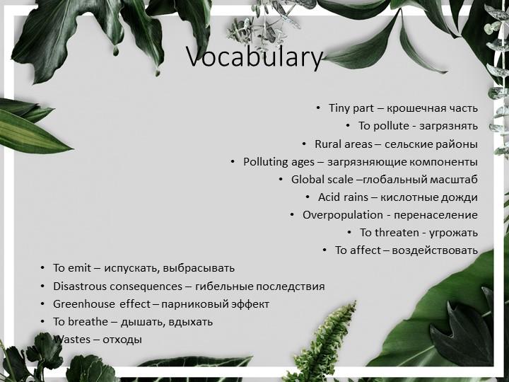 VocabularyTiny part – крошечная частьTo pollute - загрязнятьRural areas – с...