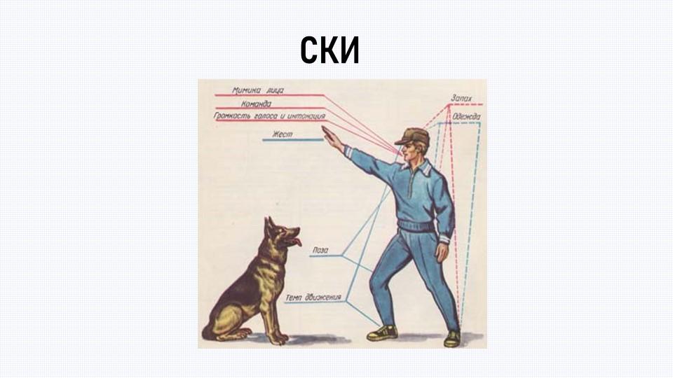 СКИэто некоторый объект(человек, животное, техническое устройство), способный...