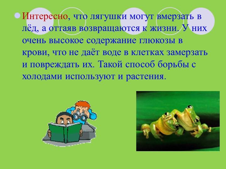 Интересно, что лягушки могут вмерзать в лёд, а оттаяв возвращаются к жизни. У...