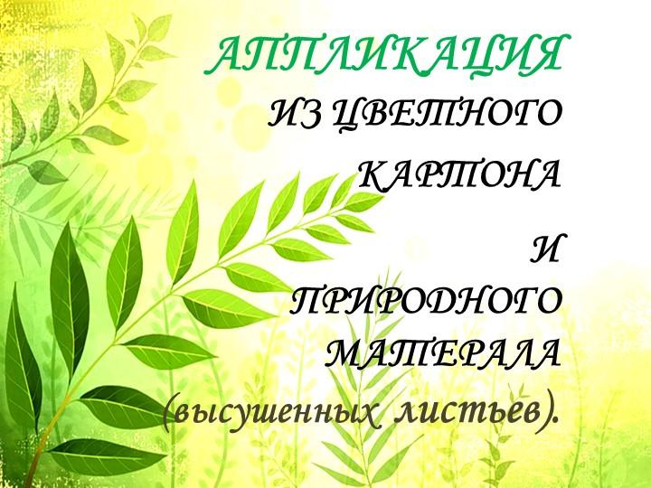 АППЛИКАЦИЯИЗ ЦВЕТНОГОКАРТОНА ИПРИРОДНОГО МАТЕРАЛА  (высушенных  листьев).