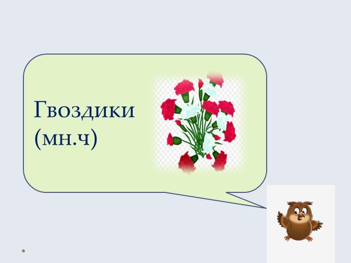 Гвоздики(мн.ч)