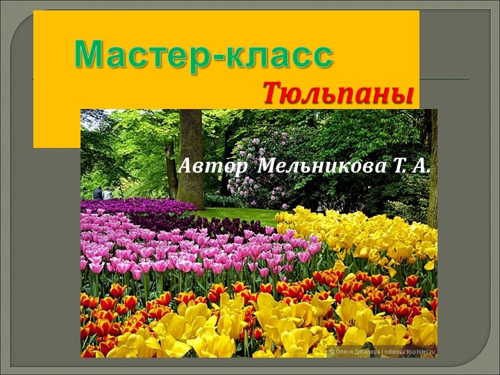 ТюльпаныМастер-классАвтор  Мельникова Т. А.