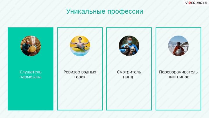 Слушатель пармезанаУникальные профессииРевизор водных горок Смотритель панд...