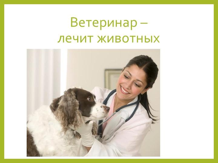 Ветеринар – лечит животных