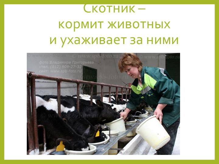 Скотник – кормит животных и ухаживает за ними