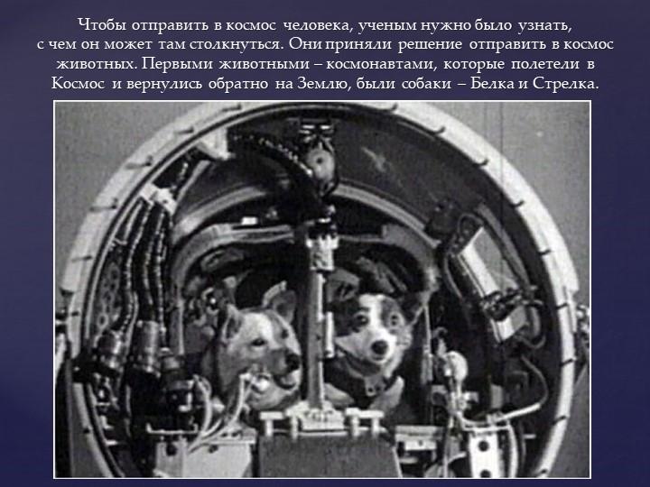 Чтобы отправить в космос человека, ученым нужно было узнать, с чем он может...