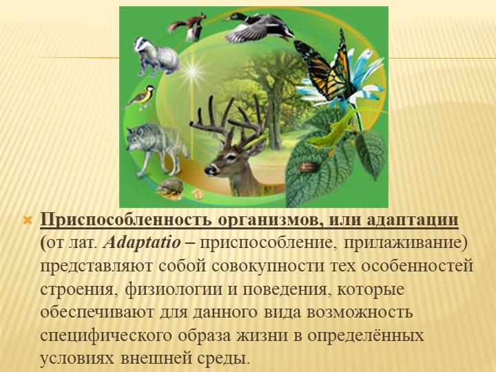 Приспособленность организмов, или адаптации (от лат. Adaptatio – приспос...