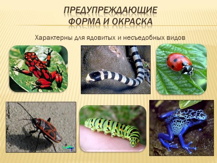 Предупреждающиеформа и окраскаХарактерны для ядовитых и несъедобных видов