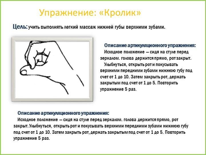 Упражнение: «Кролик»Цель: учить выполнять легкий массаж нижней губы верхними...