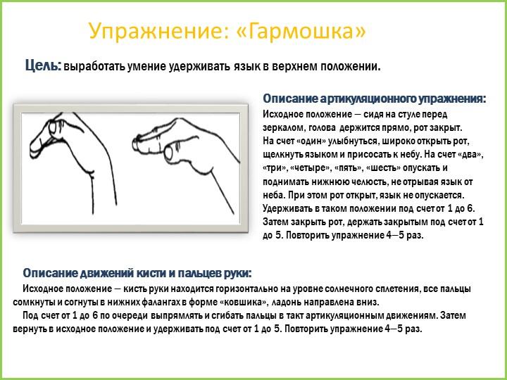Упражнение: «Гармошка»Цель: выработать умение удерживать язык в верхнем полож...