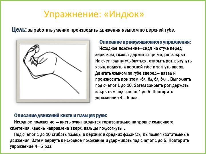 Упражнение: «Индюк»Цель: выработать умение производить движения языком по вер...
