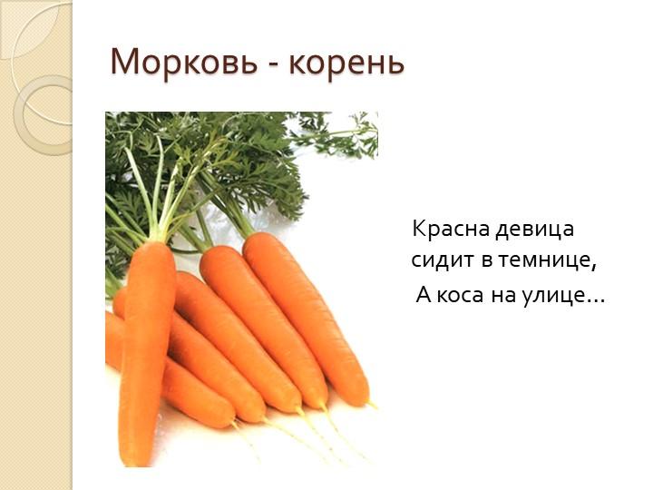 Морковь - корень    Красна девица сидит в темнице,     А коса на улице…