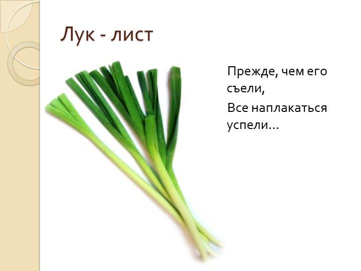 Лук - лист    Прежде, чем его съели,     Все наплакаться успели…