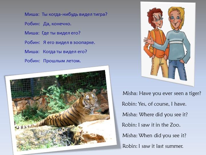 Mиша:  Ты когда-нибудь видел тигра?Робин:   Да, конечно.Миша:  Где ты видел...
