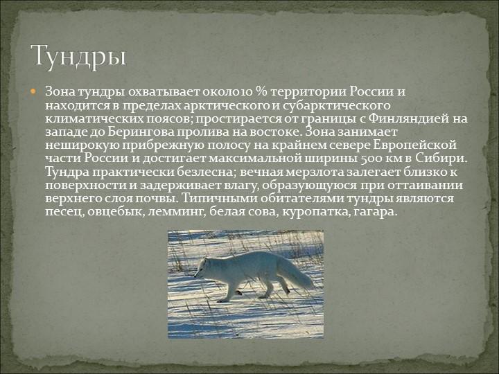 Зона тундры охватывает около 10 % территории России и находится в пределах ар...