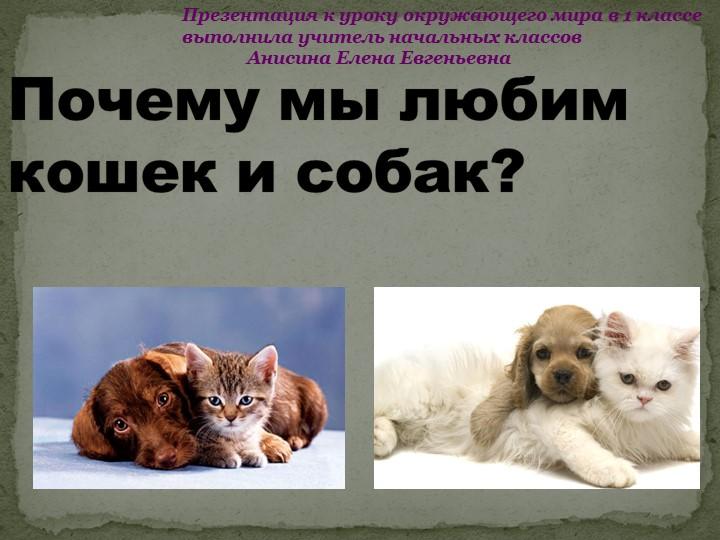 Почему мы любим кошек и собак?Презентация к уроку окружающего мира в 1 классе...