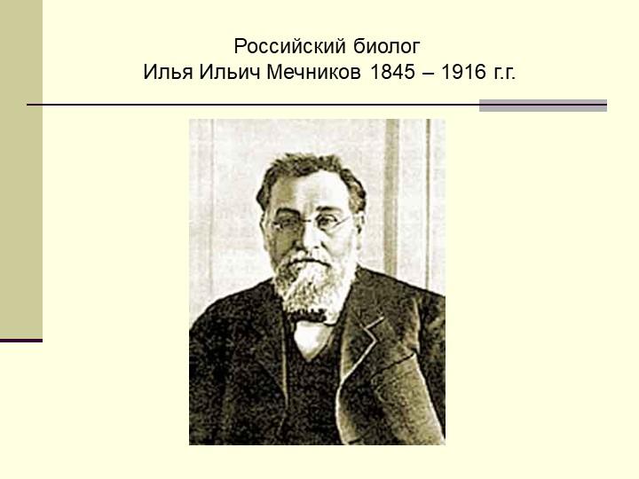 Российский биолог Илья Ильич Мечников 1845 – 1916 г.г.