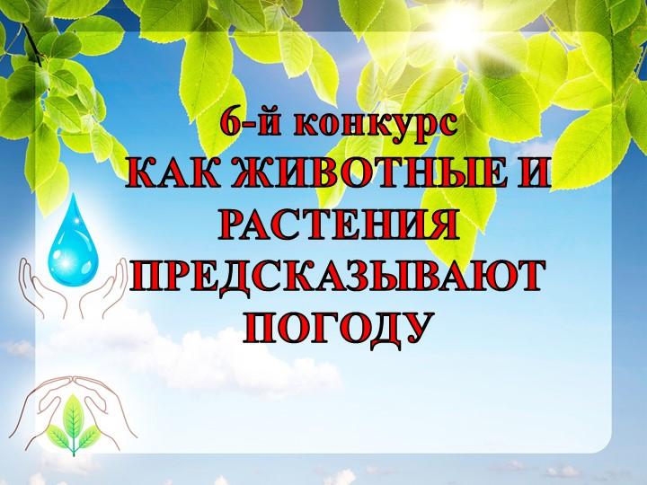 6-й конкурсКАК ЖИВОТНЫЕ И РАСТЕНИЯ ПРЕДСКАЗЫВАЮТ ПОГОДУ