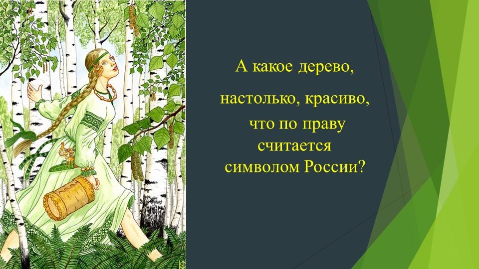 А какое дерево, настолько, красиво, что по праву считается символом России?