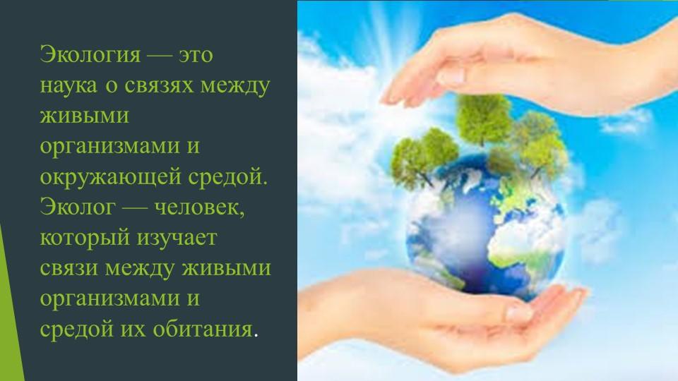Экология — это наука о связях между живыми организмами и окружающей средой.Э...