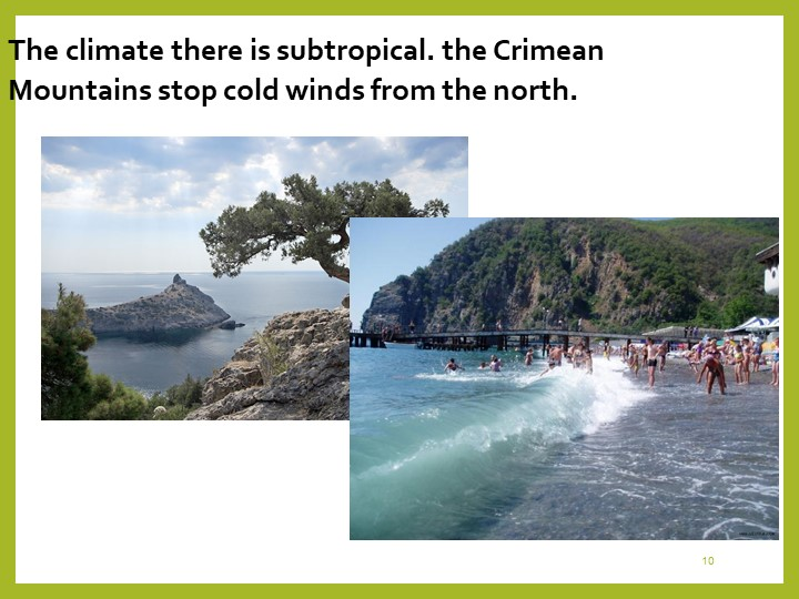 10The climate there is subtropical. the Crimean Mountains stop cold winds fro...