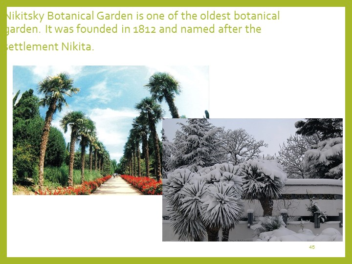 45Nikitsky Botanical Garden is one of the oldest botanical garden. It was fou...