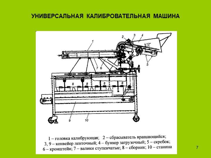 инспекционные транспортеры реферат