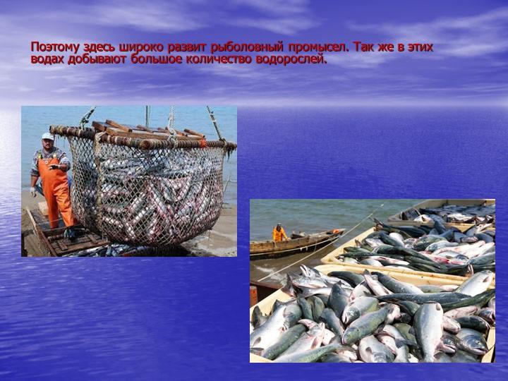 Поэтому здесь широко развит рыболовный промысел. Так же в этих водах добывают...
