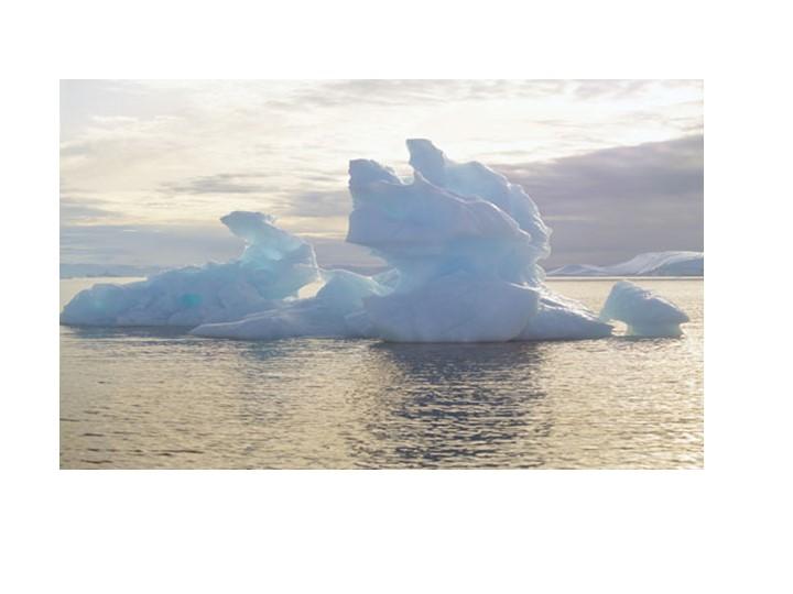 Северное море обладает значительными рыбными запасами. В море добывают...