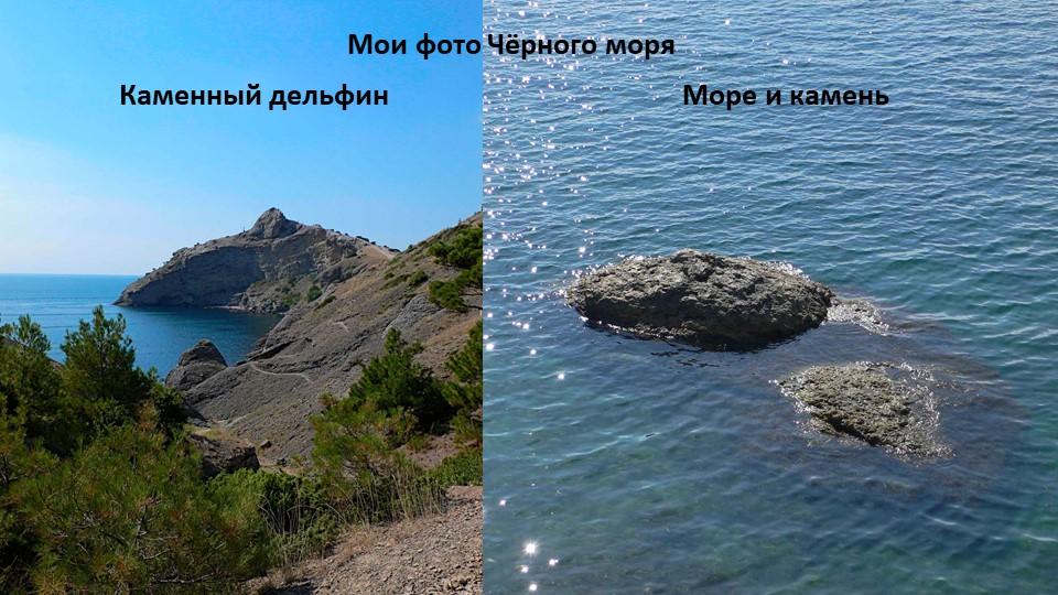 Каменный дельфинМоре и каменьМои фото Чёрного моря