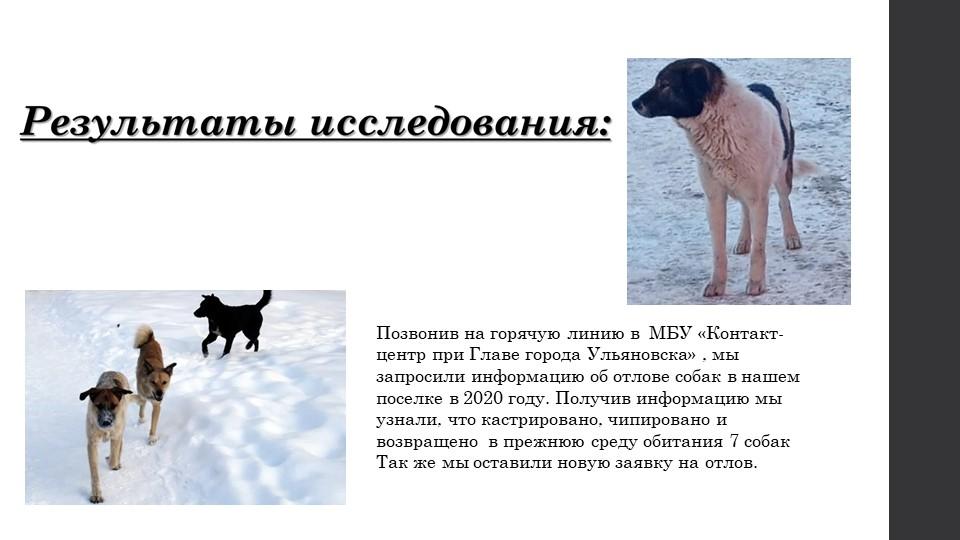 Позвонив на горячую линию в  МБУ «Контакт-центр при Главе города Ульяновска»...