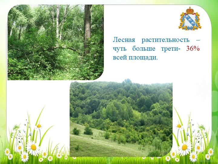 Лесная растительность – чуть больше трети- 36% всей площади.