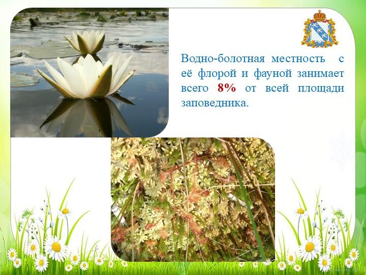 Водно-болотная местность  с её флорой и фауной занимает всего 8% от всей площ...