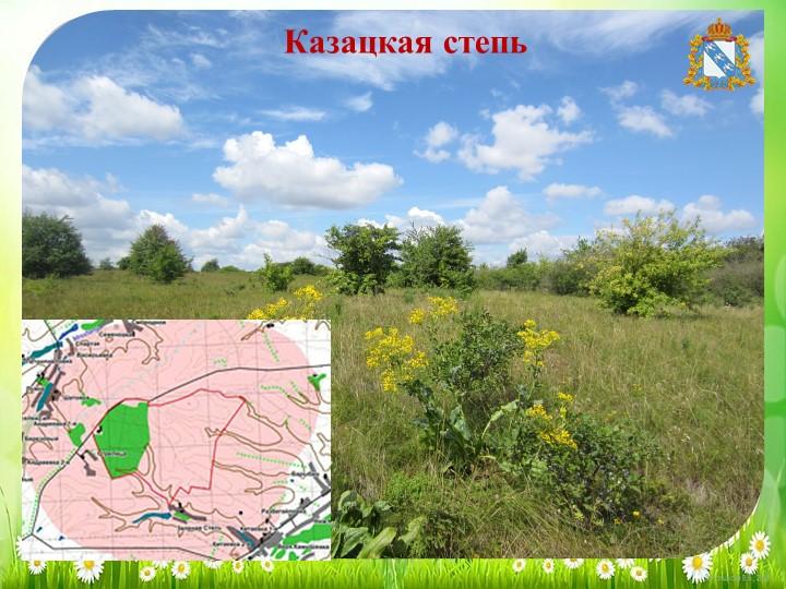 Казацкая степь