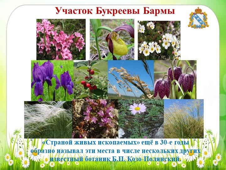 Участок Букреевы Бармы«Страной живых ископаемых» ещё в 30-е годы образно назы...