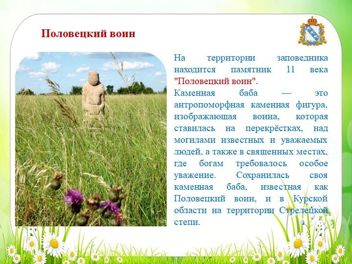 """На территории заповедника находится памятник11 века """"Половецкий воин"""".Камен..."""